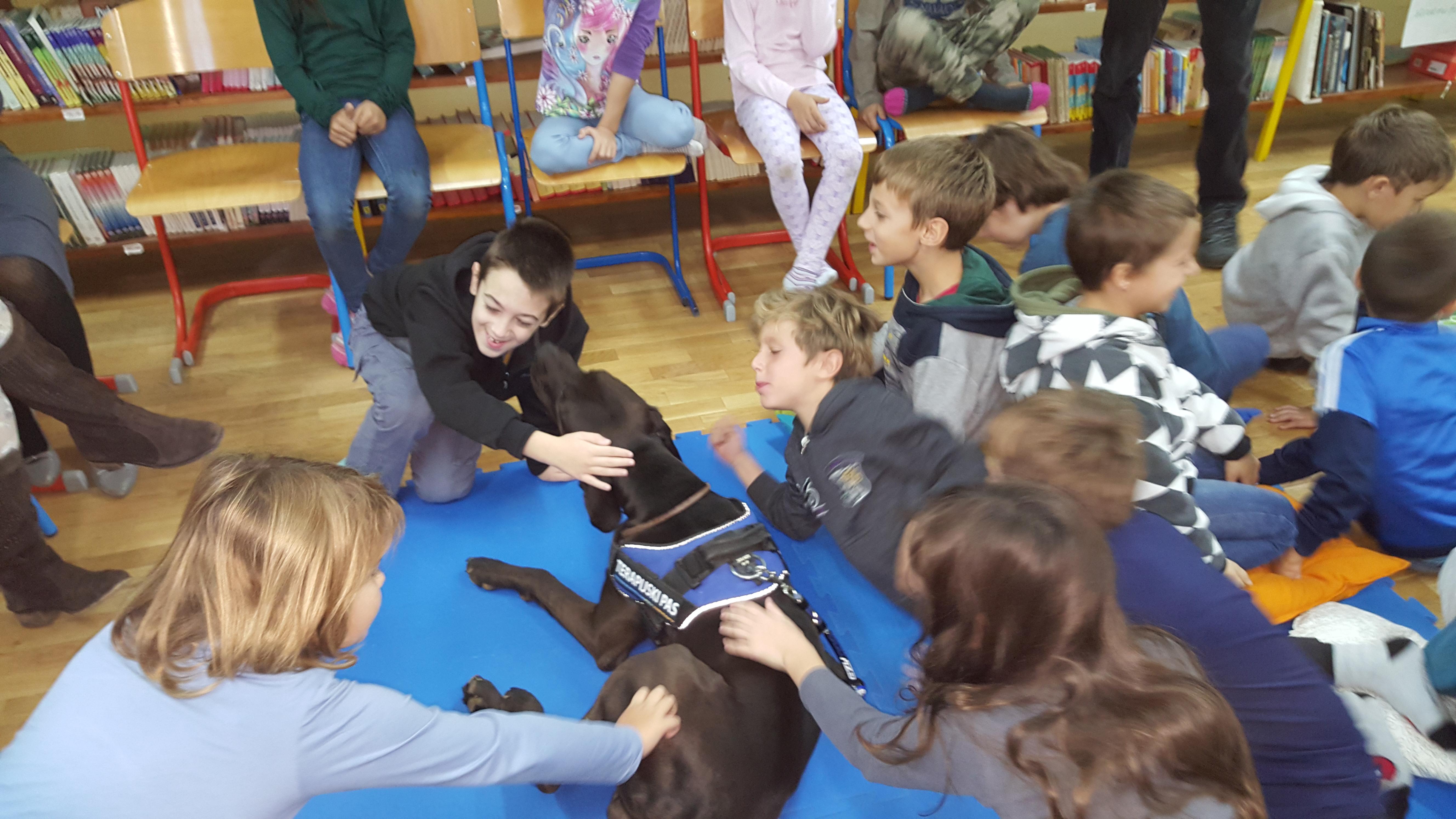 Argo_Indeficienter pet therapy_M_Zaro_3
